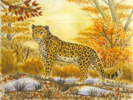 Amur autumn by Fur-kotka