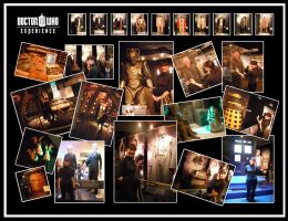 Doctor Who Experience - 18.02.12 by blackbirdrose