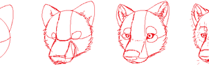 Wolf head tutorial by Pumpkabooz