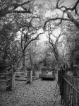 Pure Silence by CemeteryPrints