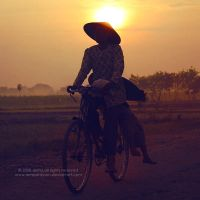 FARMER by indonesia