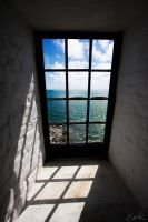 The Window by wolmers