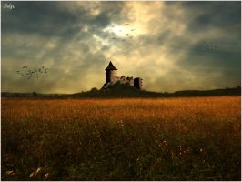 Castle on the meadow by satyaaa