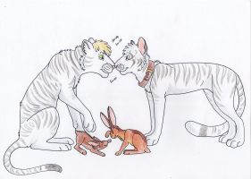 Tigers and bunnybutts by Saphiry