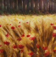 Poppies by andreuccettiart