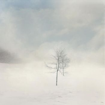 Winter Dream by intao