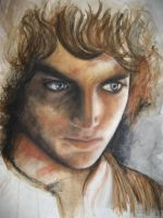 Frodo Baggins by cpn-blowfish