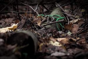 a green rope in the forest by spsera