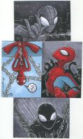 spiderman sketch cards by katiecandraw