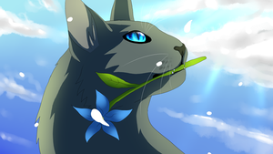 Cinderpelt by eliza1star