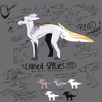 CHAVI : SPECIES REF SHEET by soyPup