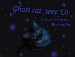Ghost cat seez U by Isteelurfoodz