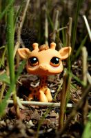 Little Lost One... by Scarlet-Photography