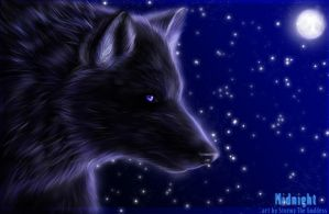 Midnight by Rudranee