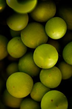 Green-Grapes by Matthew-Reed
