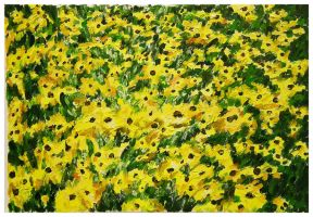 Black Eyed Susans by Peacewise