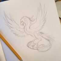 196- Phoenix Sketch by Lucky978