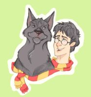 Harry and Sirius by sn0otchie