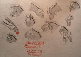 DRS Paranormal Activity: 6 Kaaring by StableDaydreams