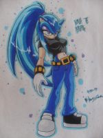 Nebula The Hedgehog - Requested by Chant4Ezkaton2000