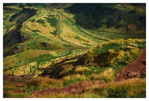 Rolling Hills by ReneAigner
