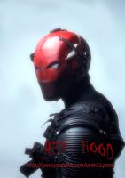The Red Hood by LLPros