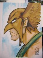SDCC Sketch: Hawkman by grantgoboom