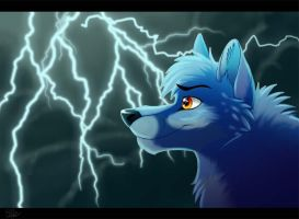 Through the Clouds and Thunder by WindWo1f