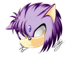 Icon fer MariaTheHedgehoge by yorkthetomboy