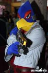Falco by DallenaD