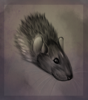 rattie by Spaggled