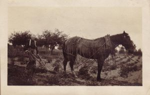 Vintage Photo 16 by markopolio-stock