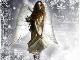 A Christmas Angel by Moniver
