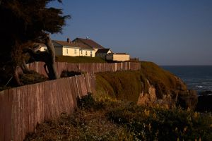 no porpoises allowed on the property by GrinningPhD