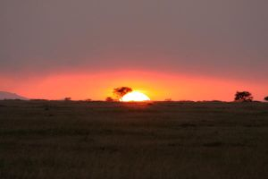 african sunset by Calli0pe