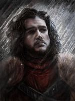 Jon Snow the King who knows Nothing by Dr-F0x