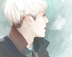 SeHun by polotentse