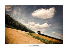 Landscape by jfphotography