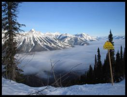 Inversion by Andy-Stewart