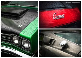 Muscle Car Details by AmericanMuscle