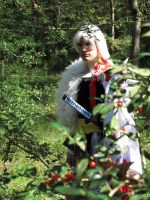 Cosplay: Lord Sesshomaru by SonicRTR