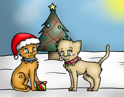Merry Christmas ThunderClan by scr3aam3r