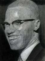 malcolm x by booode