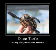 Disco Turtle by Kiatonasy
