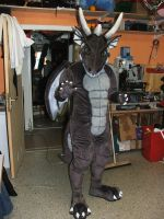 Dragonsuit by Bengges