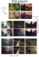 Wild pack of Photoshop actions by AlexandraSophie