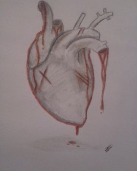 Realistic Heart (Drawing) by Wolffinatic