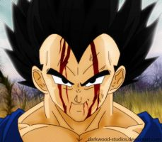 DBZ Vegeta by darkwood-studios