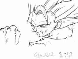 Ssj3 Goku 04-03-2013 by VegetasLittleLover