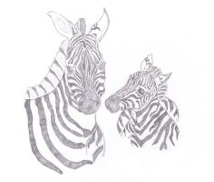 Zebra Mother and Child by caitiedidd